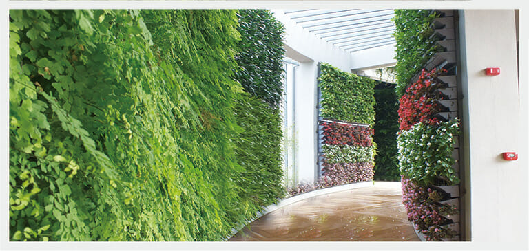 Green Wall Trays, Vertical Green Wall, Planted Wall Trays, Green Wall System