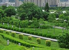 Greening urban open space can help alleviate residents' depression
