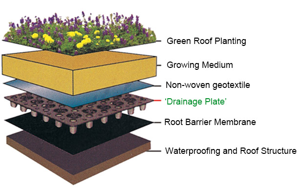 Think About Using 'Drainage Plate' on Your Roof