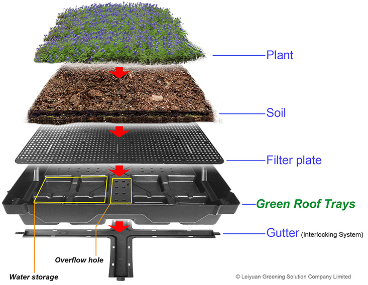 Green Roof Trays, Green Roof Modular Tray System, Green Roof Modules, Green Roofs
