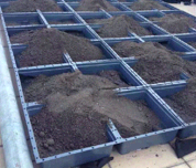 Roof planting module installation process