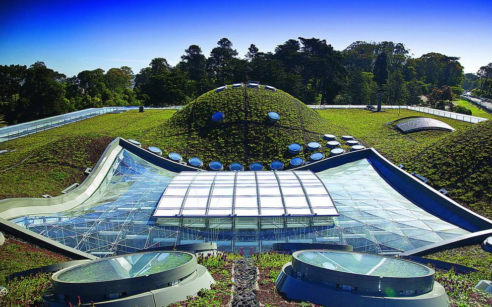 """The Greenest Museum"" -California Academy of Sciences"