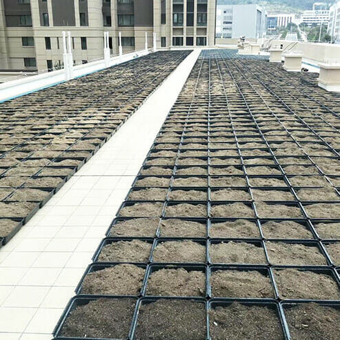 Green Roof Trays, Green Roof Modules, Modular Green Roof System, Green Roofs