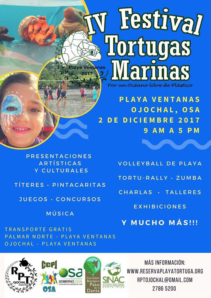 tortuga festival 2017 playa ventanas