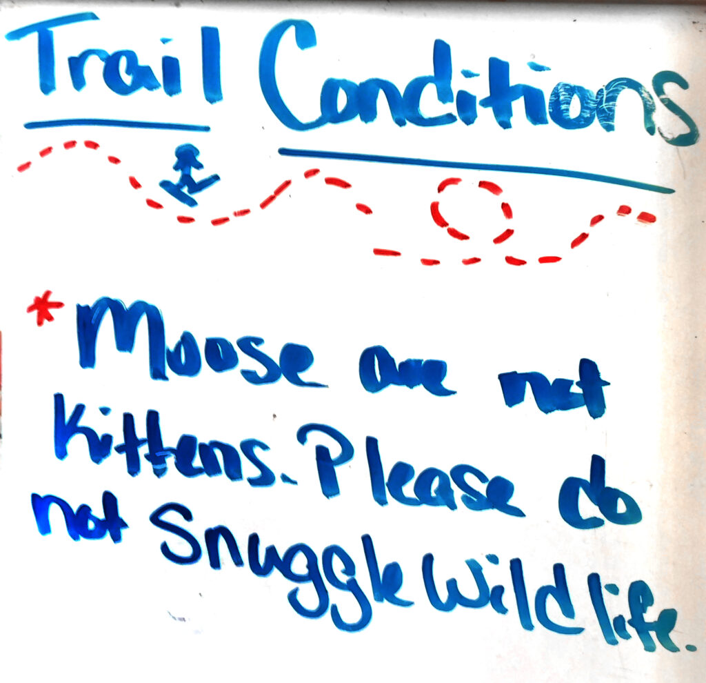 Trail conditions sign that reads: Moose are not kittens. Please do not snuggle wildlife.