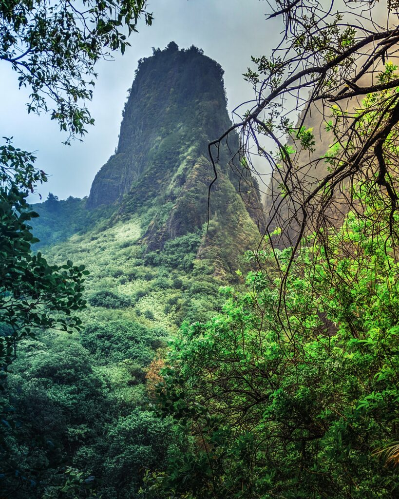 The Iao Needle, seen from Iao Tableland Trail, rises from a lush rainforest, Iao Valley State Park.