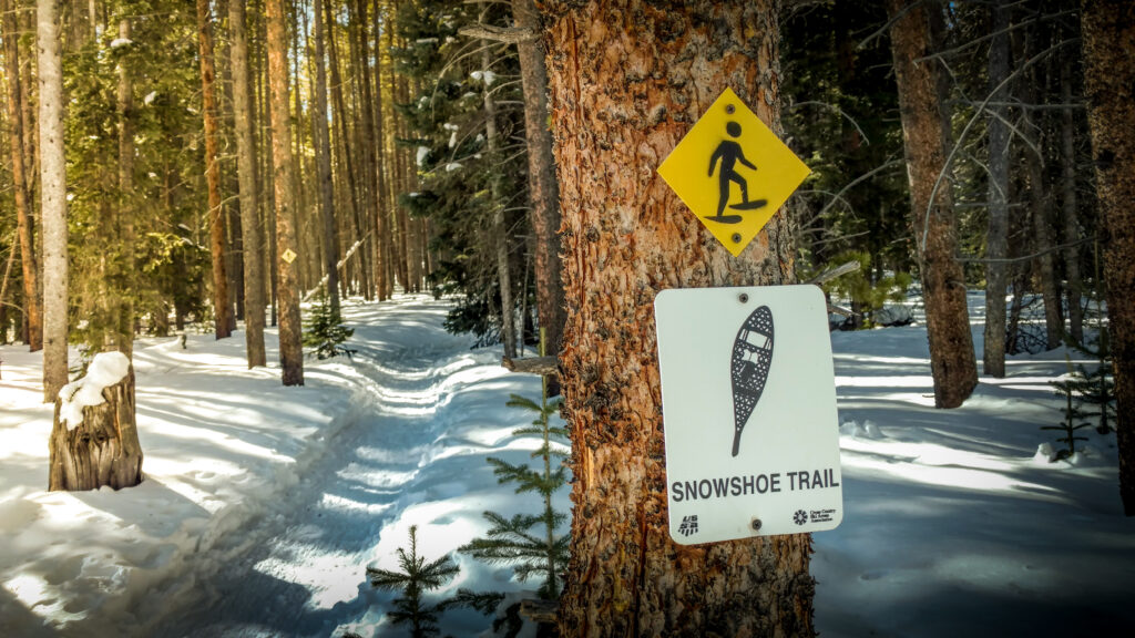 Snowshoe trail extends through snowy wooded area.