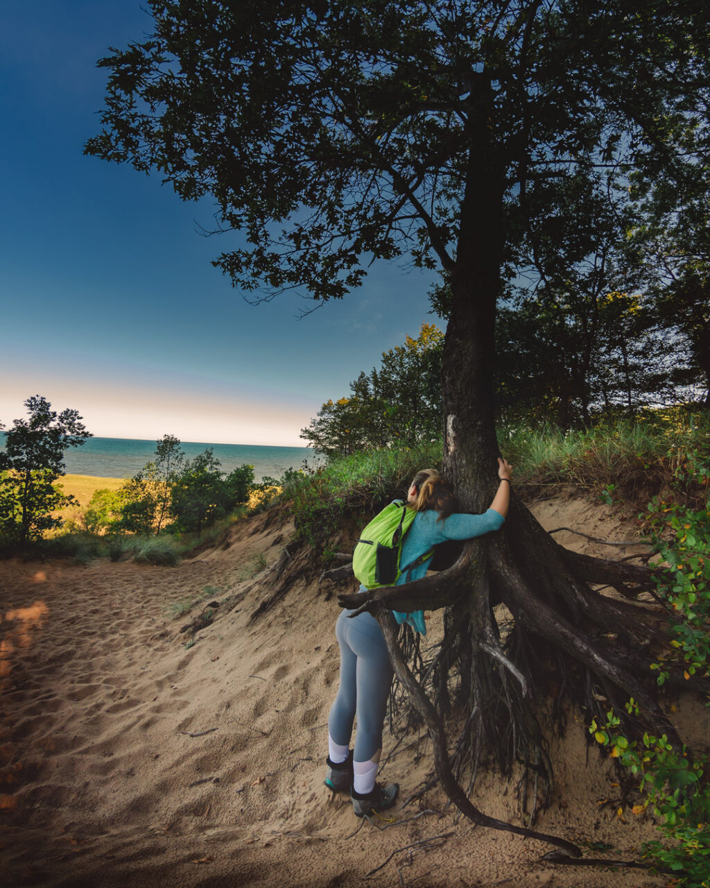 A woman hiker hugs a tree with exposed roots that seem to hug her back, with sand and Lake Michigan.