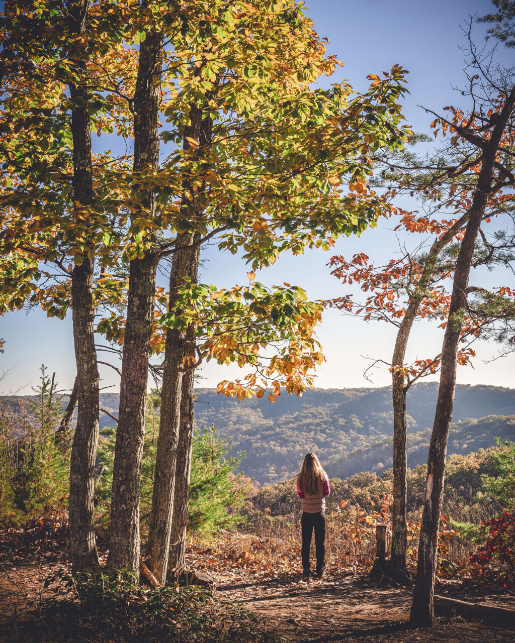 Woman hiker on Auxier Ridge Trail in wooded scene overlooking Appalachian vistas in the Daniel Boone National Forest in the Red River Gorge Geological Area of Kentucky.