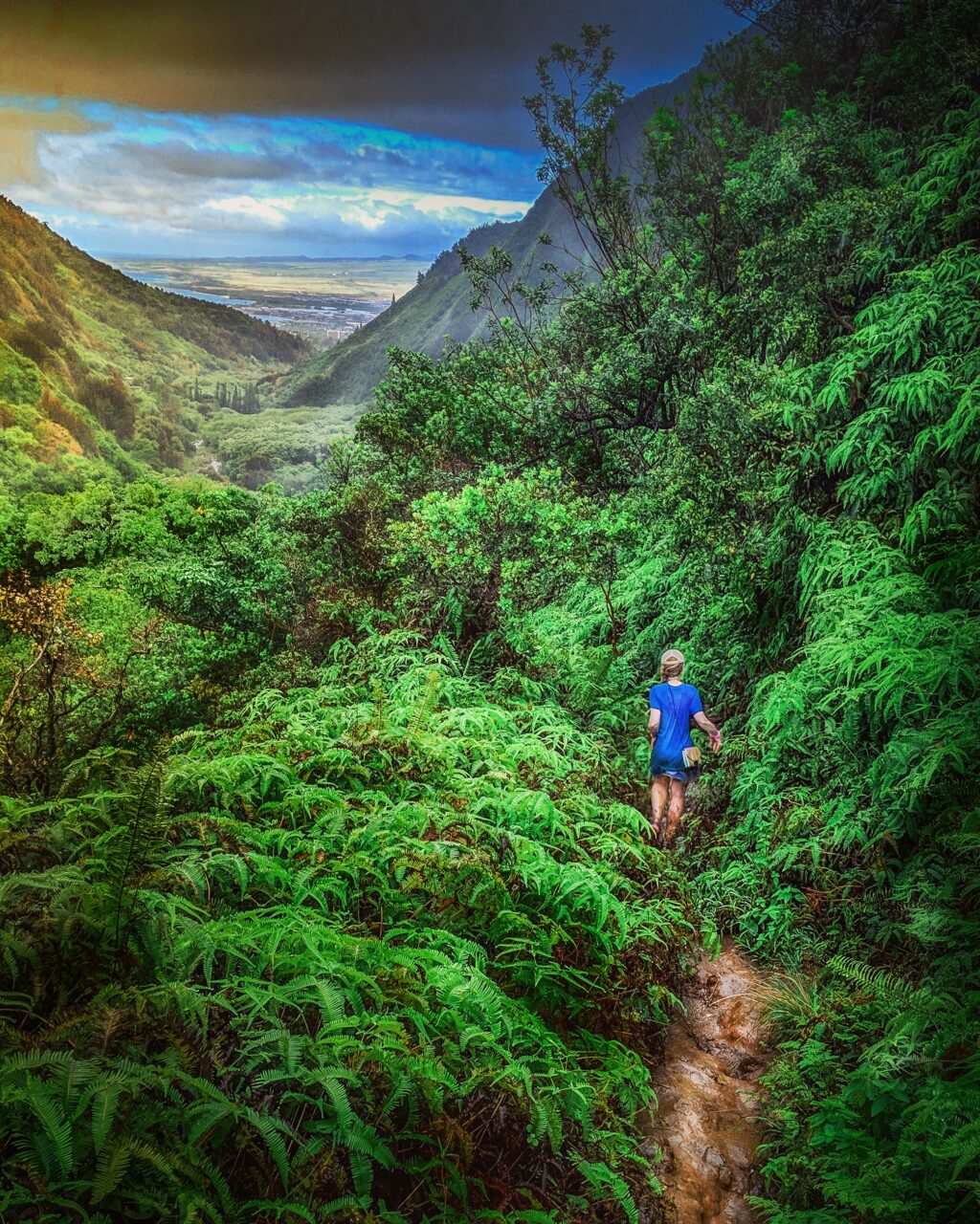 Woman hiking on dirt Tableland Secret Trail in mountainous Hawaiian jungle, Iao Valley, Maui.