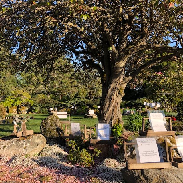 202005-haiku display in the garden