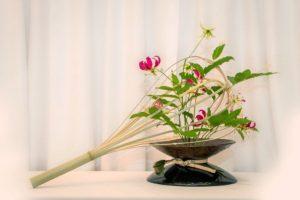 Ichiyo split bamboo
