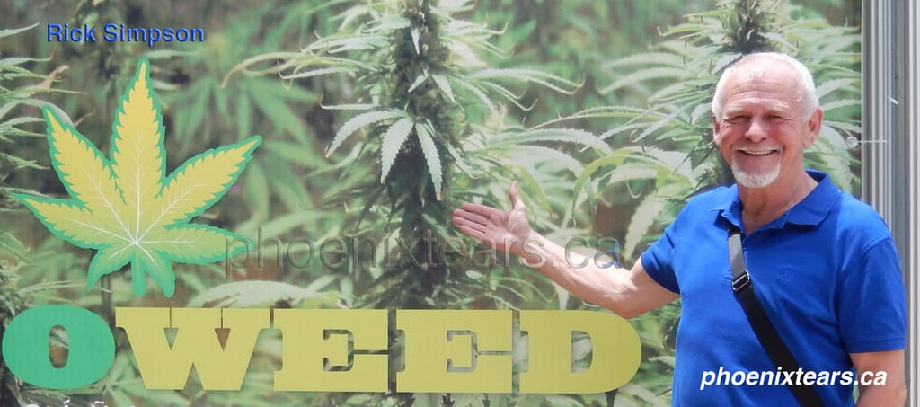 Cannabis Hemp Solutions to Human Problems / An Interview with Rick Simpson