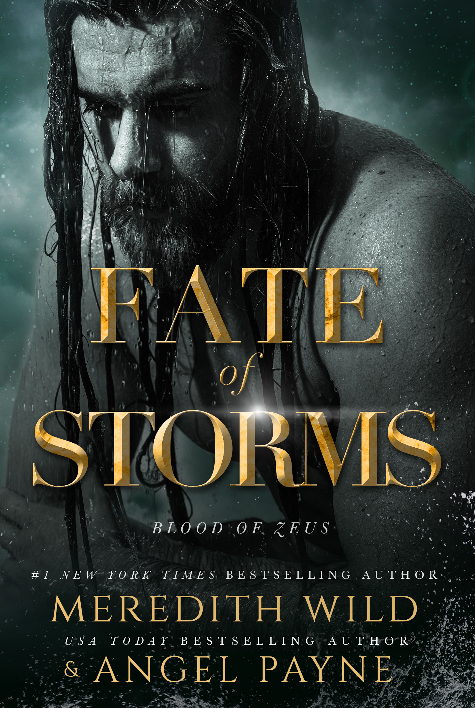 REVIEW ➞ Fate of Storms by Meredith Wild and Angel Payne