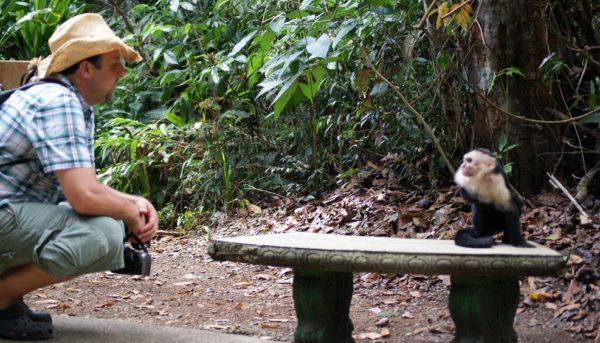 Manuel Antonio monkey