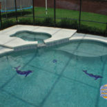 Nice Pool with Dolphin Accents