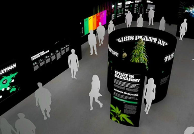 a-'museum-of-weed'-is-coming-to-hollywood