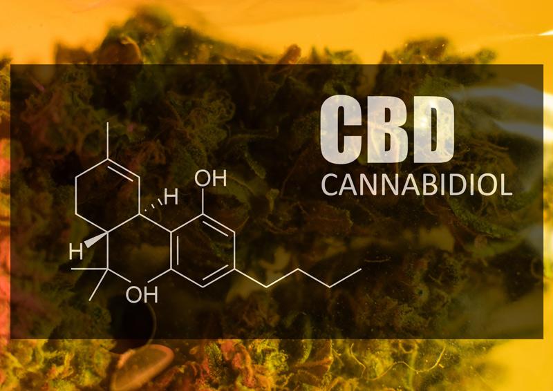 CBD Benefits – Common Health Benefits of CBD (cannabidiol)