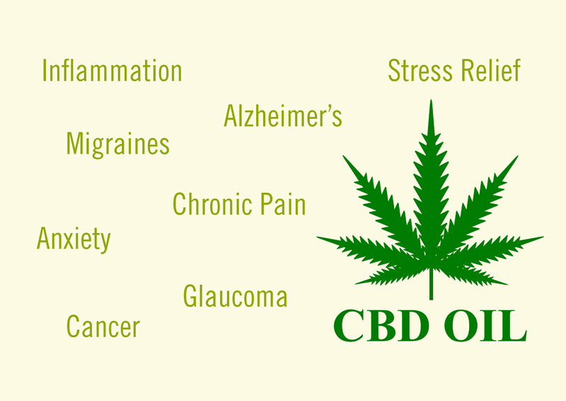 CBD Oil: Benefits, Uses, Side Effects, and Safety