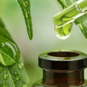 What is CBD Oil? What is Cannabidiol? (can·na·bi·di·ol)