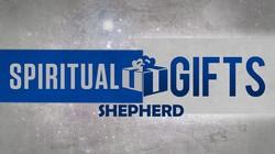 Guest Post: Pastor as a Shepherd