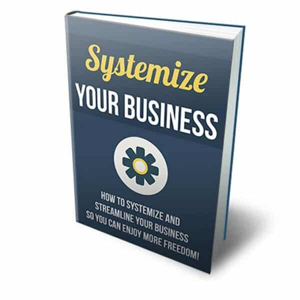 how to create a business system pdf