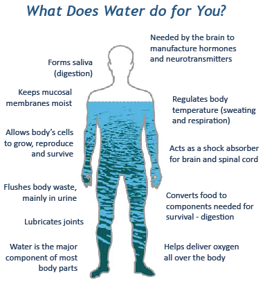 water journalism what does water do for you