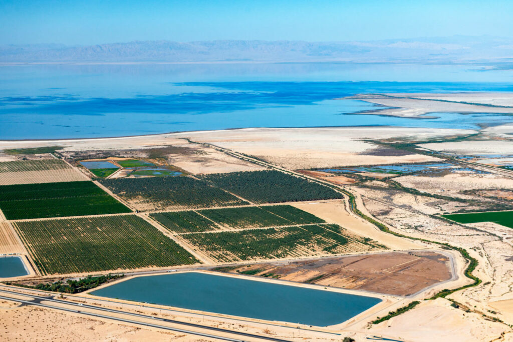 Water levels in California's Salton Sea are dropping, as less Colorado River is reaching it, causing a loss of wetlands that serve as critical bird habitat. Officials have devised a $700 million plan to restore 15,000 acres of wetlands, but the project is still not fully funded. PHOTO BY TED WOOD