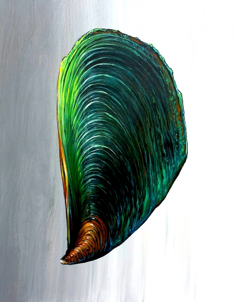"""Green Mussel, acrylic on wooden panel. 16x20"""""""