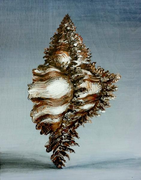 """Zebra Shell, acrylic on wooden panel. 11x14"""""""