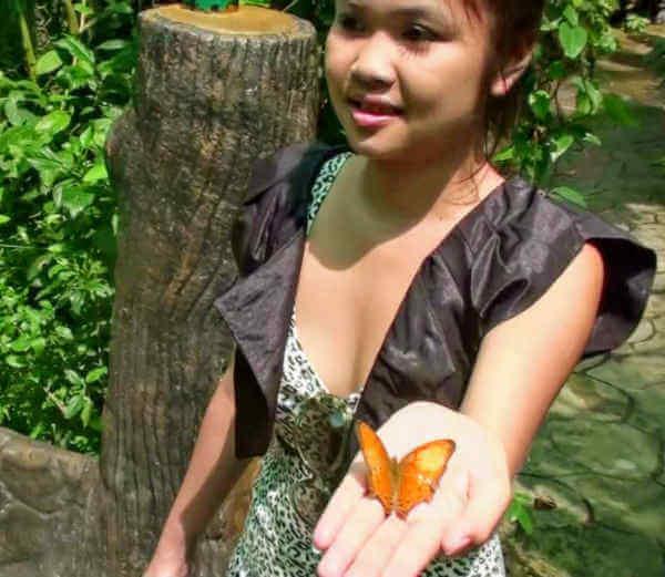 Butterfly garden Singapore