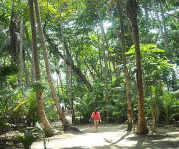 Nikoi-island near Singap;ore