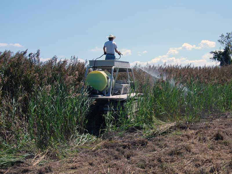Vegetation management - Aquatic application