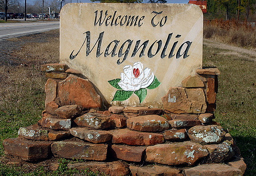 Welcome-to-Magnolia