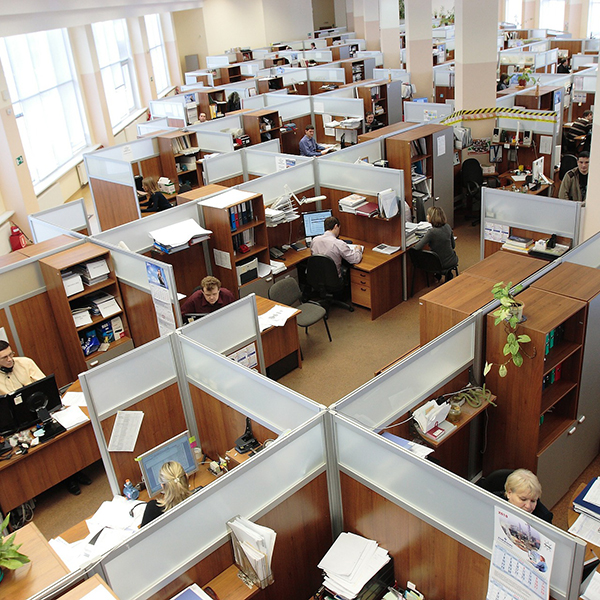 Aerial View of People working in cubicles