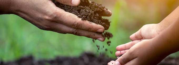 teach composting