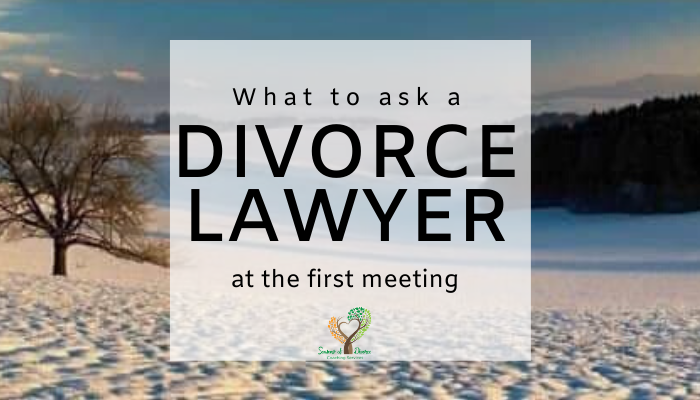 What to ask a divorce lawyer, questions to ask a divorce lawyer on first meeting with Seasons of Divorce Shari Frasure, Divorce Coach
