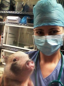 Carissa Adams, CVT, veterinary technician, avian and exotic animal clinic, exotic vet tech, vet tech