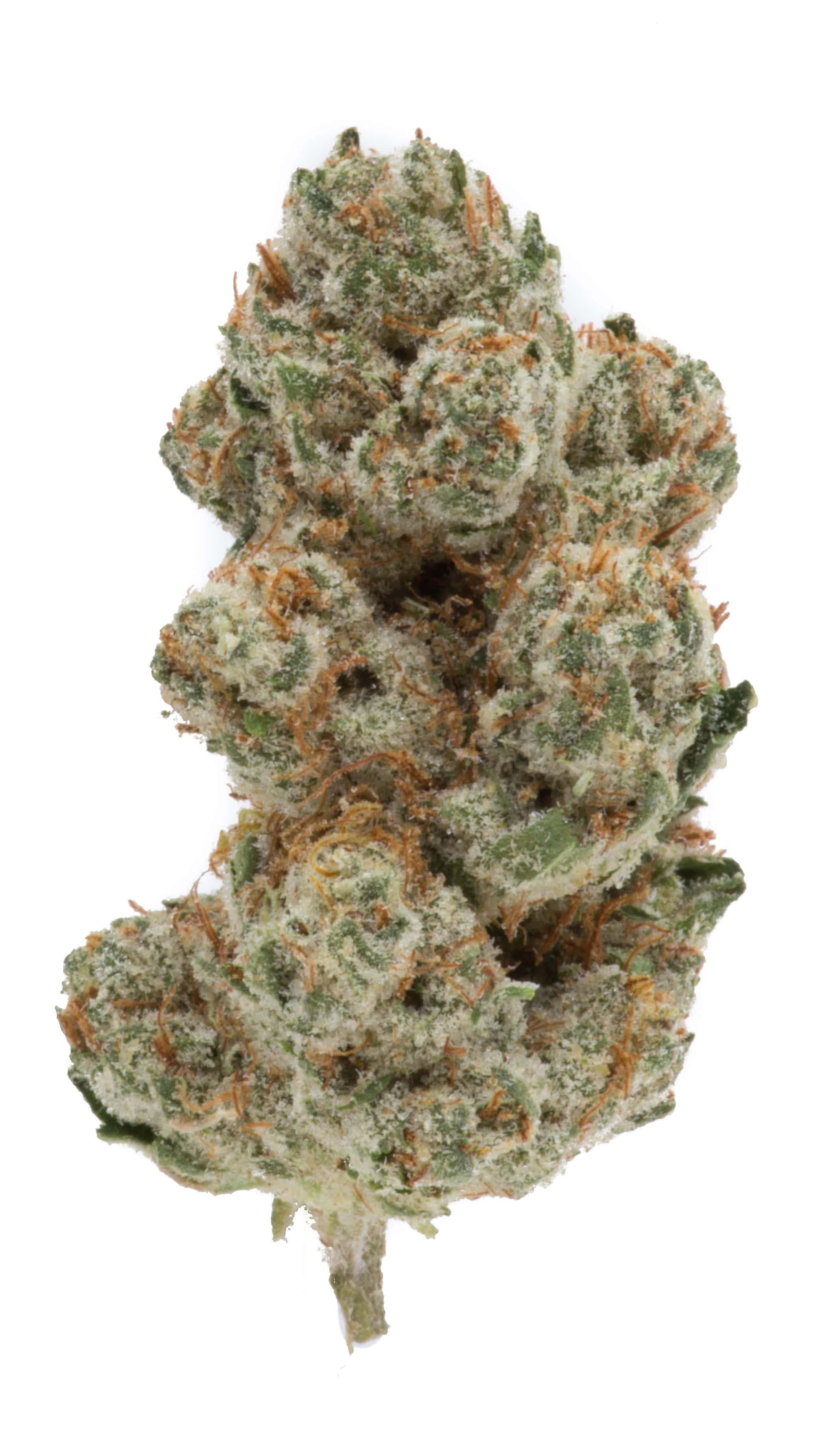 Louie Og Green Man Cannabis