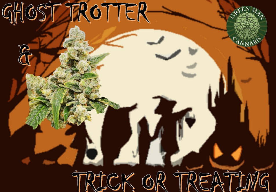 ghost-trotter-and-trick-or-treating