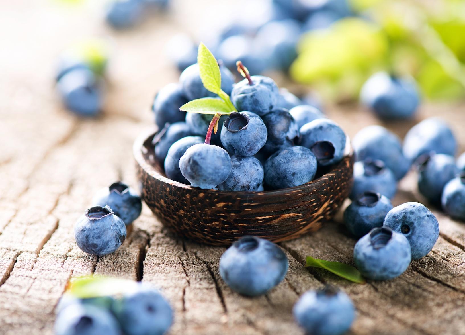 Blueberries turn out better when grown alongside grass • Earth.com