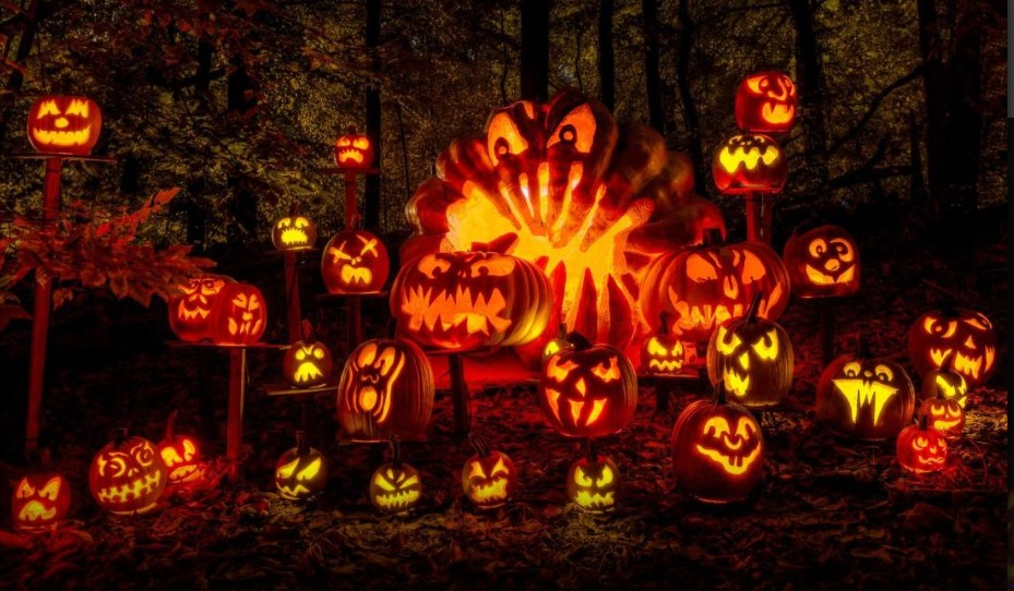 Rancho Folclorico Cruz de Cristo - 2019 Annual Halloween Party