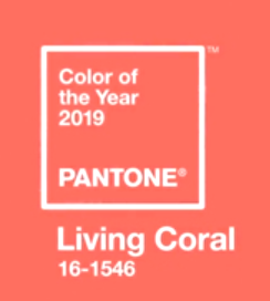 2019 Colour of the year