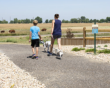 Walk/Bike Trails Underway Using Recycled Asphalt