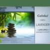 Goloka Aromatherapy Series Incense Sticks 15G - Lavender