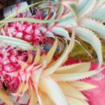 年貨大街で台湾の旧正月準備。尾牙に花市、紅包準備も忘れずに