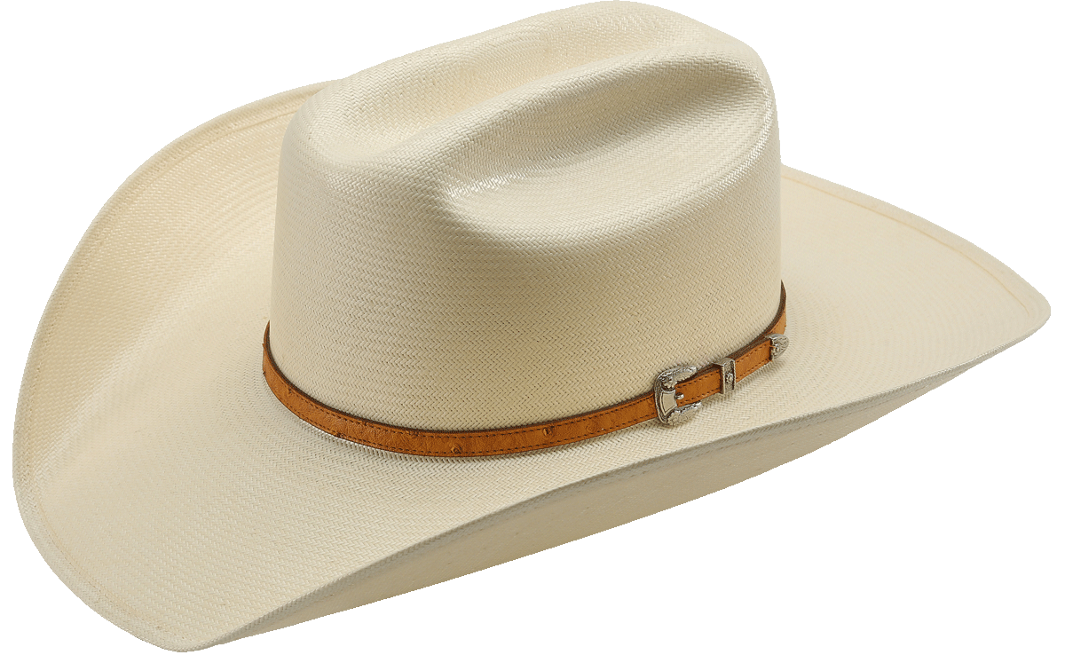 6da65673f7f7b American Hat Company