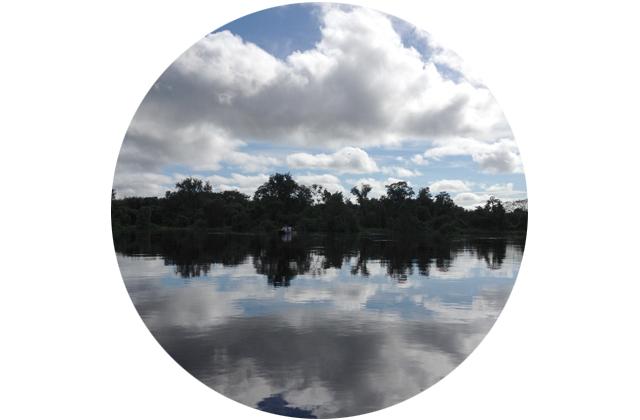 bola_pantanal