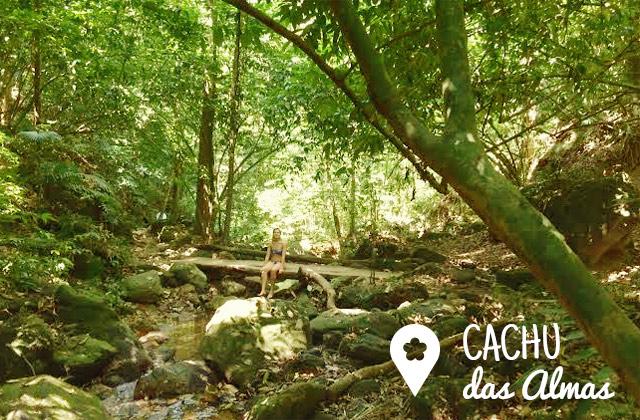 cachu_almas