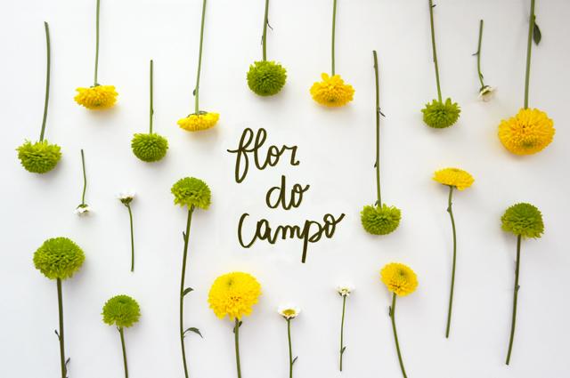 floriografia-flordocampo-2